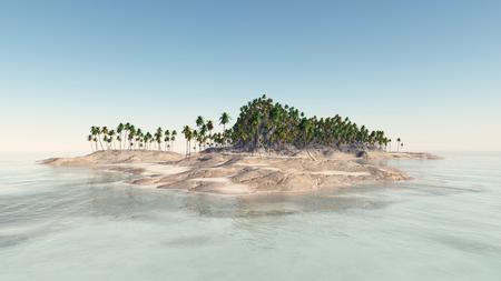 Tropische Insel mit Palmen Standard-Bild - 79558564