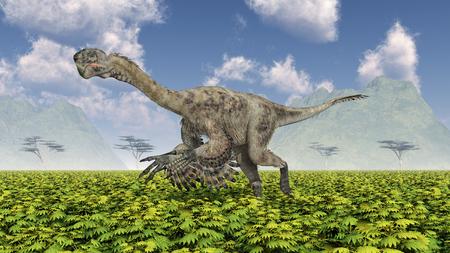 Theropod dinosaur Citipati