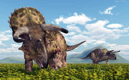 Dinosaur Nasutoceratops Stok Fotoğraf