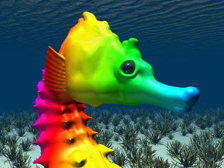 Kleurrijk zeepaardje Stockfoto