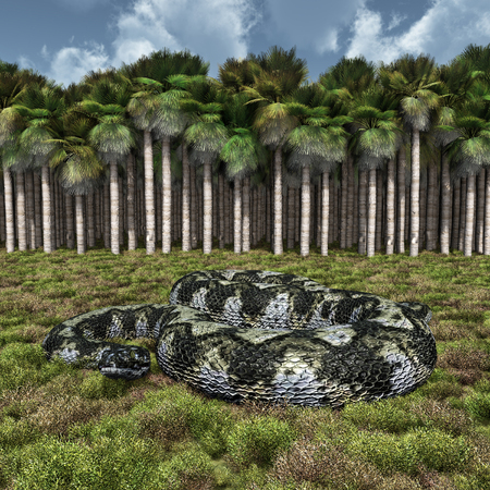 Prehistoric giant snake Titanoboa Stok Fotoğraf