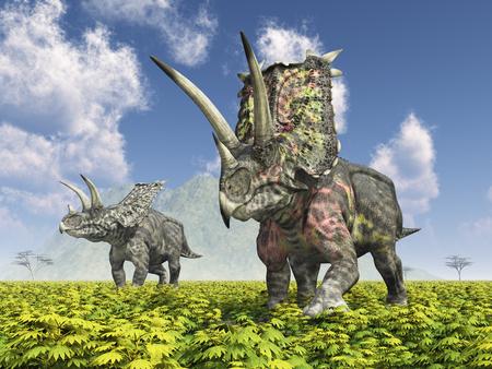 Dinosaur pentaceratops in a landscape