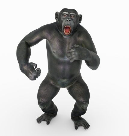 Chimpanzee attack Stock Photo