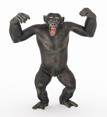 Chimpanzee in a dominant pose Imagens