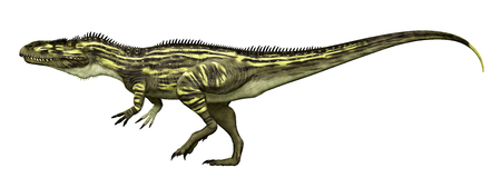 Dinosaur Torvosaurus isolated on white background Stock Photo