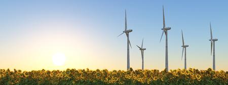 Wind turbines in a field of sunflowers at sunset Standard-Bild - 124861810