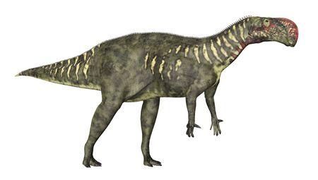 Dinosaur Altirhinus isolated on white background