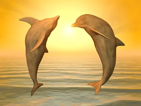 Two jumping dolphins at sunset