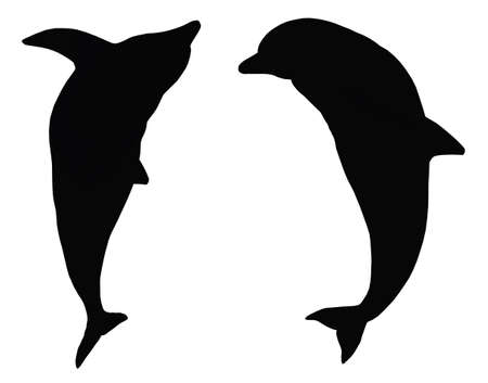 Silhouette of two jumping dolphins