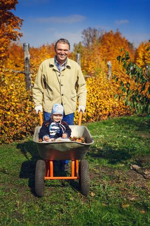niño empujando: Abuelo dando nieto paseo en carretilla en el jardín Foto de archivo