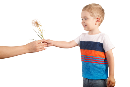 blondy: Mother gives blondy boy giant dandelion. isolated on white