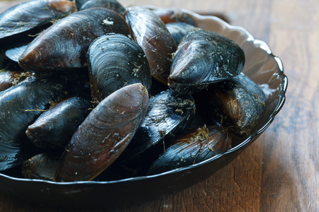 molluscs: Fresh Black sea Mussels ready to cook