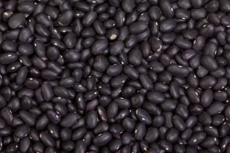 Black beans background Stock Photo - 17601570