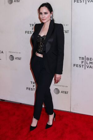 """NEW YORK, NY - MAY 03. 2019: Pamela Ford attends at """"It Takes A Lunatic"""" 2019 Tribeca Film Festival at Stella Artois Theater at BMCC Tribeca Performing Arts Center"""
