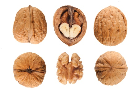 tannins: six walnuts isolated on the white background