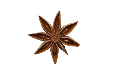 aniseed: aniseed isolated on white background, brown anise over white