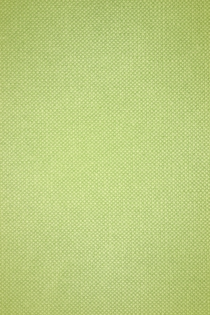 grid pattern texture, paper stationery green background photo