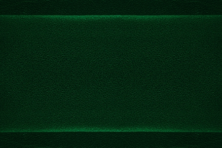 luster: green leather background, metallic luster grain texture