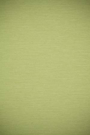 green canvas background, fabric row pattern texture, olive-green backdrop photo