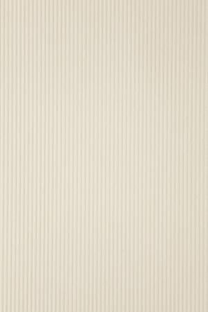 ecru: ecru paper background or stripe pattern texture