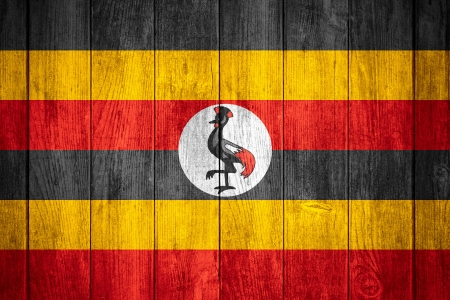 ugandan: flag of Uganda or Ugandan banner on wooden background