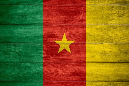cameroonian: flag of Cameroon or Cameroonian banner on wooden background