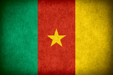 cameroonian: flag of Cameroon or Cameroonian banner on paper rough pattern texture Stock Photo