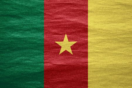 cameroonian: flag of Cameroon or Cameroonian banner on canvas texture