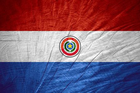 bandera de paraguay: Paraguay bandera o estandarte en textura de madera