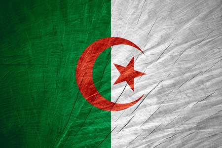 Algierski: Flaga Algierii lub Algierii banner na drewnianych tekstury