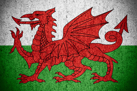 welsh flag: bandiera del Galles o gallese banner sul ruvido pattern texture