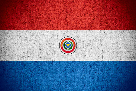paraguayan: flag of Paraguay or Paraguayan banner on rough pattern texture