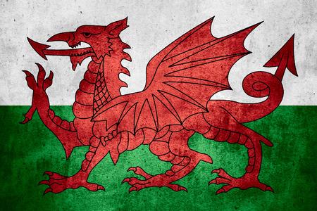 welsh flag: bandiera del Galles o gallese banner sul modello ruvido texture di sfondo