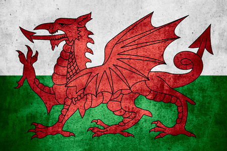 flag of Wales or Welsh banner on rough pattern texture background