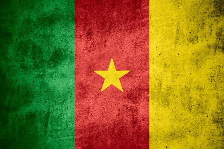 cameroonian: flag of Cameroon or Cameroonian banner on rough pattern texture background
