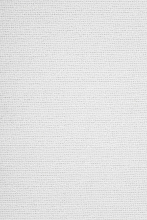 grid: white canvas background or grid pattern texture