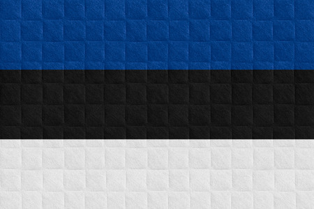 estonian: flag of Estonia or Estonian banner on check pattern background Stock Photo