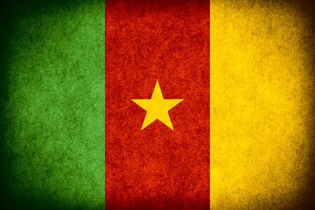 cameroonian: flag of Cameroon or Cameroonian banner on paper rough pattern vintage texture