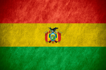 bolivian: flag of Bolivia or Bolivian banner on canvas texture