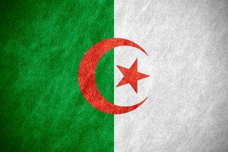 algerian flag: flag of Algeria or Algerian banner on canvas texture