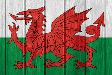 welsh flag: flag of Wales or Welsh banner on wood board texture Archivio Fotografico