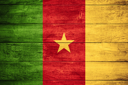 cameroon: flag of Cameroon or Cameroonian banner on wooden background