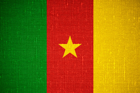 cameroon: flag of Cameroon or Cameroonian banner on canvas background