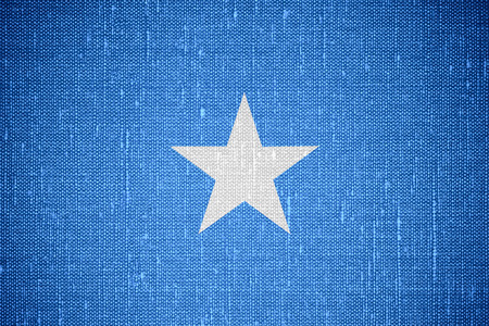 somalian: flag of Somalia or Somalian banner on canvas background Stock Photo