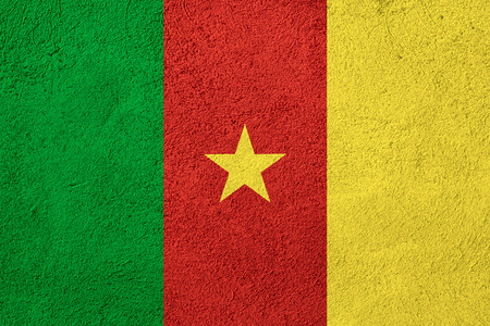 cameroon: flag of Cameroon or Cameroonian banner on rough pattern background Stock Photo