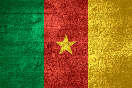 cameroonian: flag of Cameroon or Cameroonian banner on rough texture
