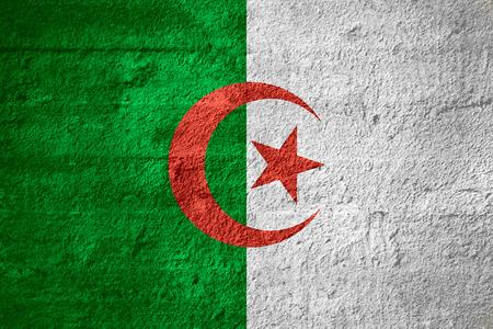 algerian flag: flag of Algeria or Algerian banner on rough texture Stock Photo