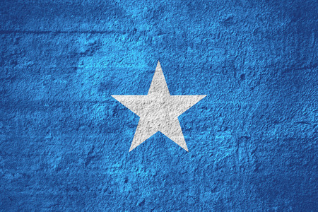 somalian: flag of Somalia or Somalian banner on rough texture
