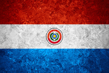 paraguayan: flag of Paraguay or Paraguayan banner on vintage background