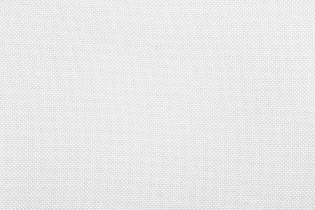 white canvas: white canvas texture or grid pattern abstract background